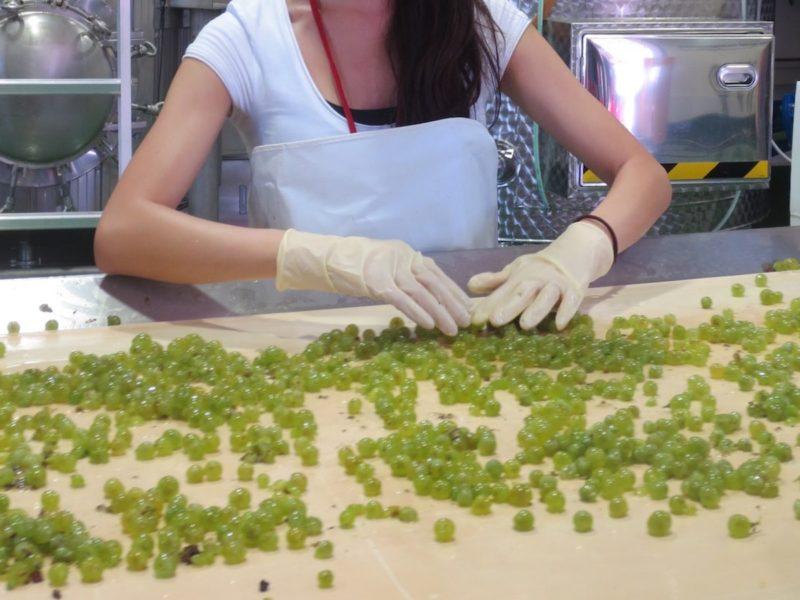 工場のライン上で手摘み直後のぶどうの実を選別