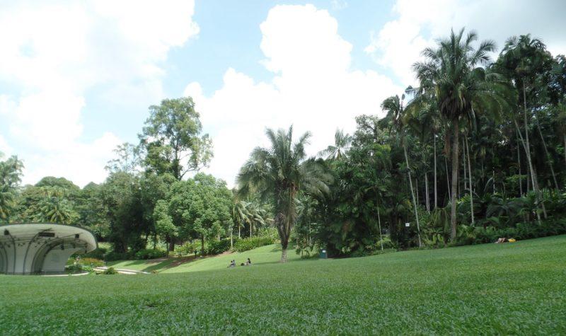 シンガポールのボタニックガーデンの芝の広場
